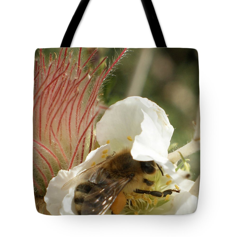 Bee Tote Bag featuring the photograph Bee Break by Ernie Echols