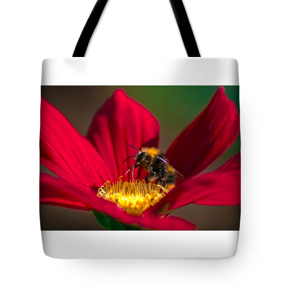 Bee Tote Bag featuring the photograph Beebot by Stwayne Keubrick