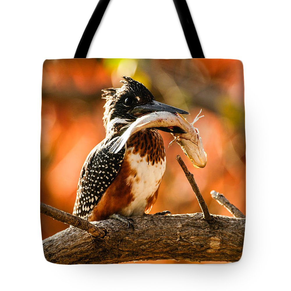 Action Tote Bag featuring the photograph Before The Meal by Alistair Lyne