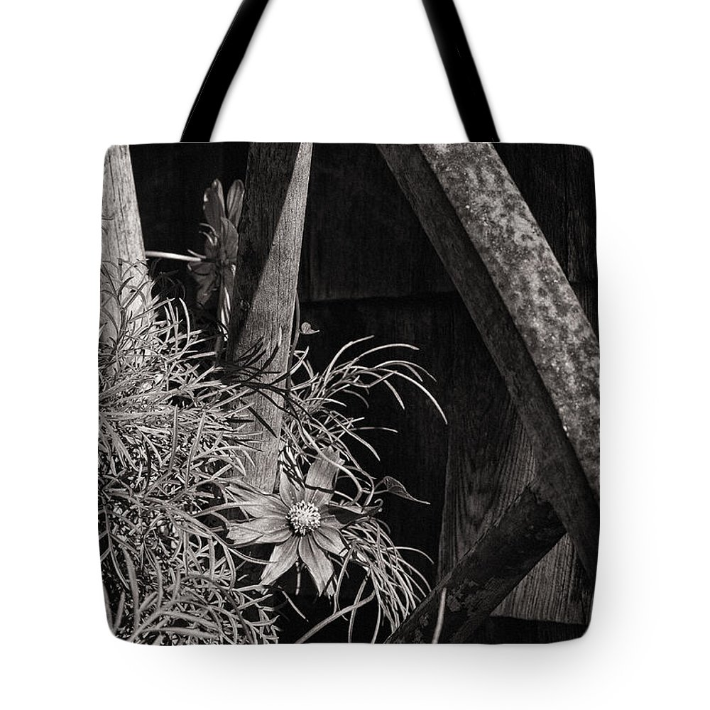 Wheels Tote Bag featuring the photograph Beneath The Wheel by Susan Capuano