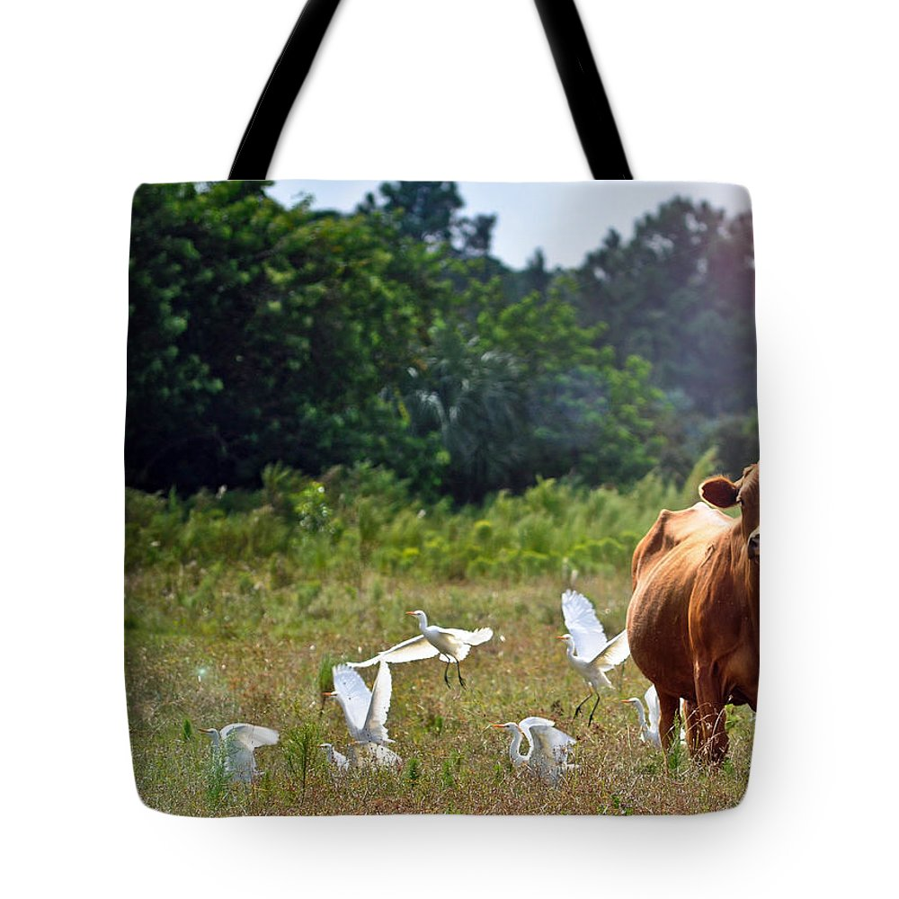 Cow Tote Bag featuring the photograph Bessy by Tammy Lee Bradley