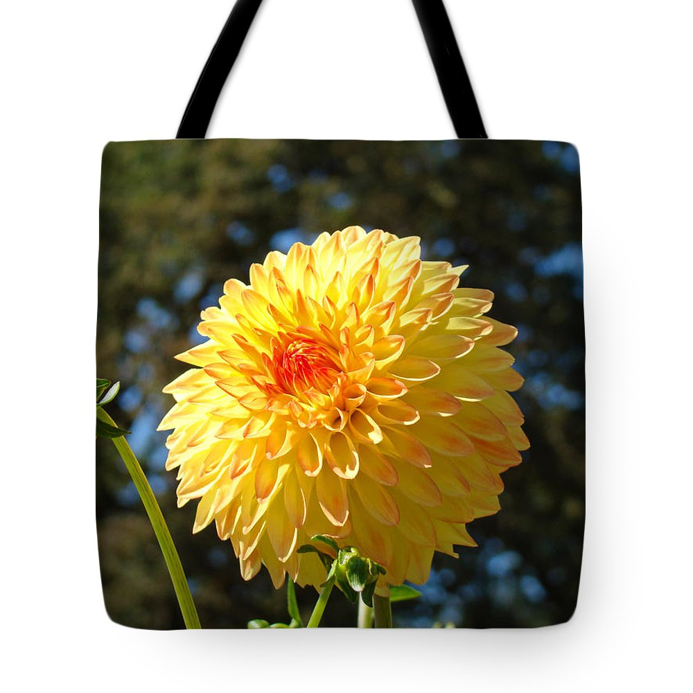 Best selling orange yellow dahlia flower floral baslee tote bag for office tote bag featuring the photograph best selling orange yellow dahlia flower floral baslee by baslee izmirmasajfo