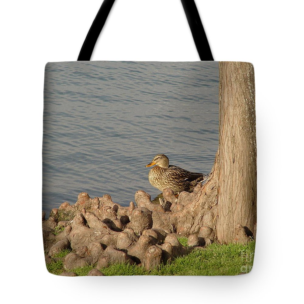 Duck Tote Bag featuring the photograph Bethany Lakes Duck by Jerry Bunger