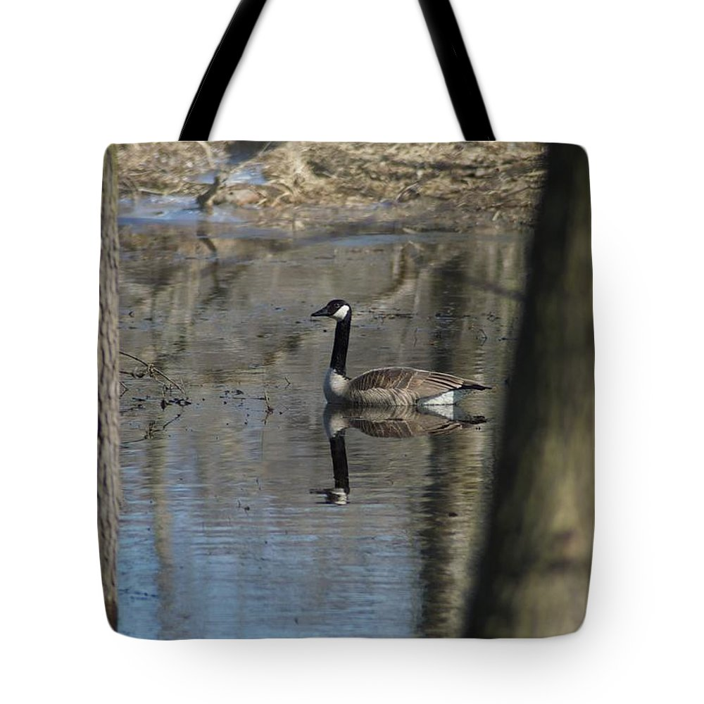 Canada Goose Tote Bag featuring the photograph Between by Joseph Yarbrough