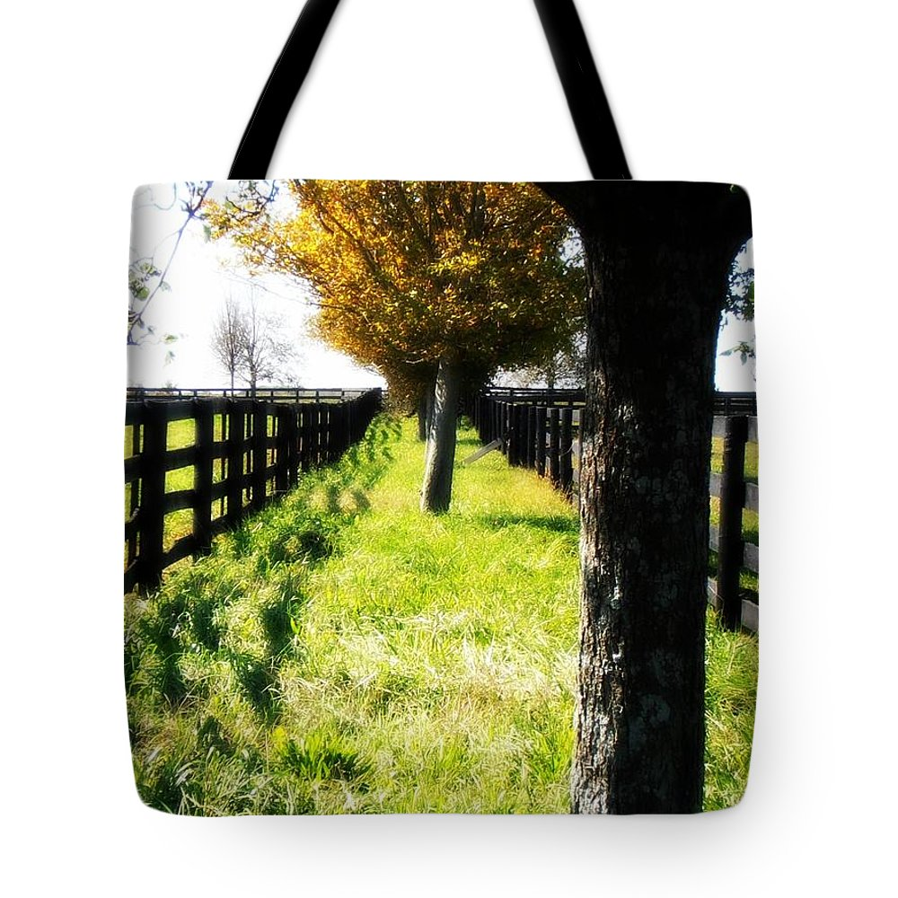 Farms Tote Bag featuring the photograph Between Two Farms by Kimberly Perry