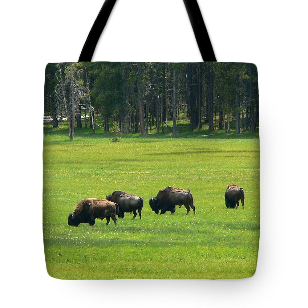 Bison Tote Bag featuring the photograph Big Boy Meadow by Eric Tressler