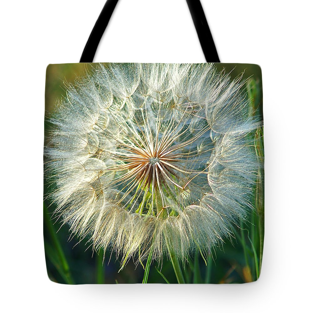 Dandelions Tote Bag featuring the photograph Big Dandelion Seed by Randy Harris