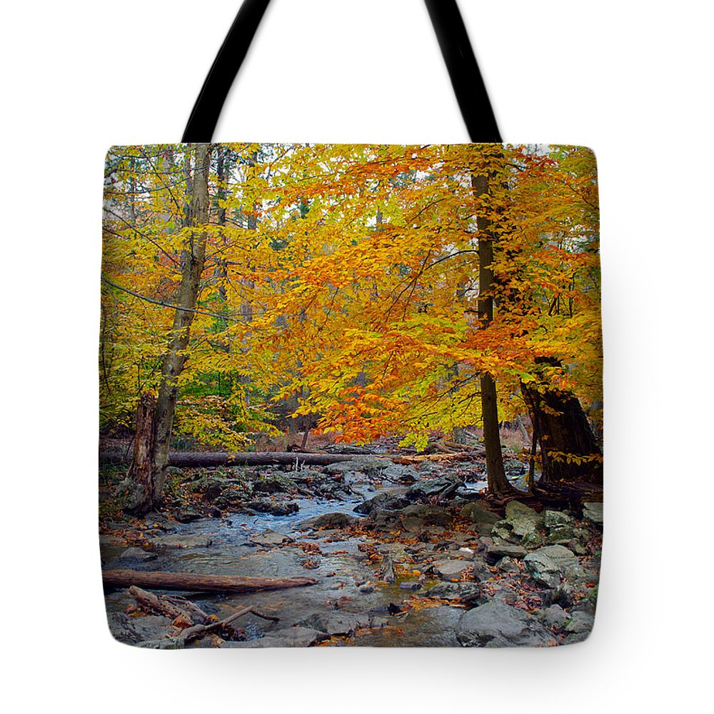 Cunningham Falls Tote Bag featuring the photograph Big Hunting Creek Down Stream From Cunningham Falls by Mark Dodd