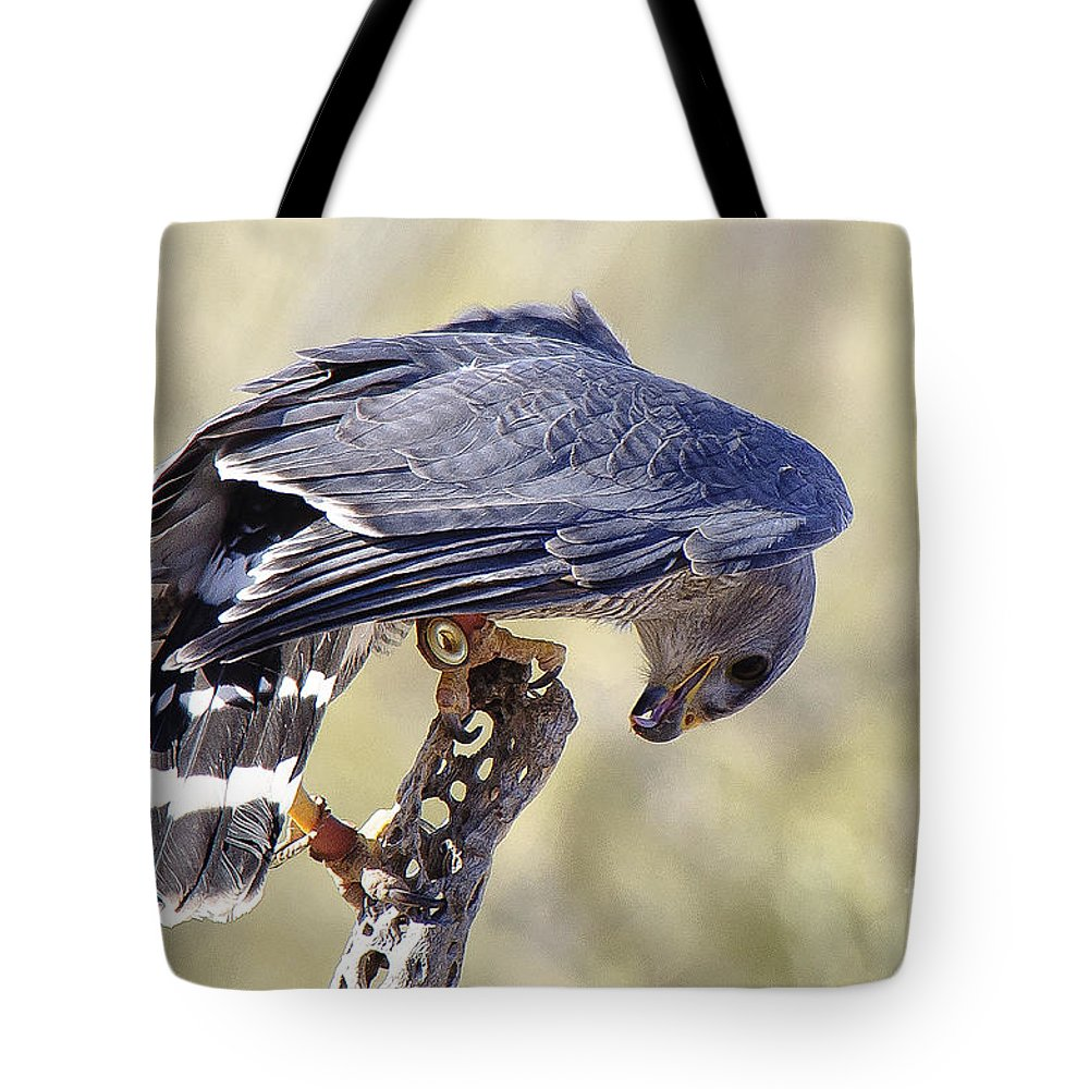 Bird Tote Bag featuring the photograph Bird 6 by Larry White
