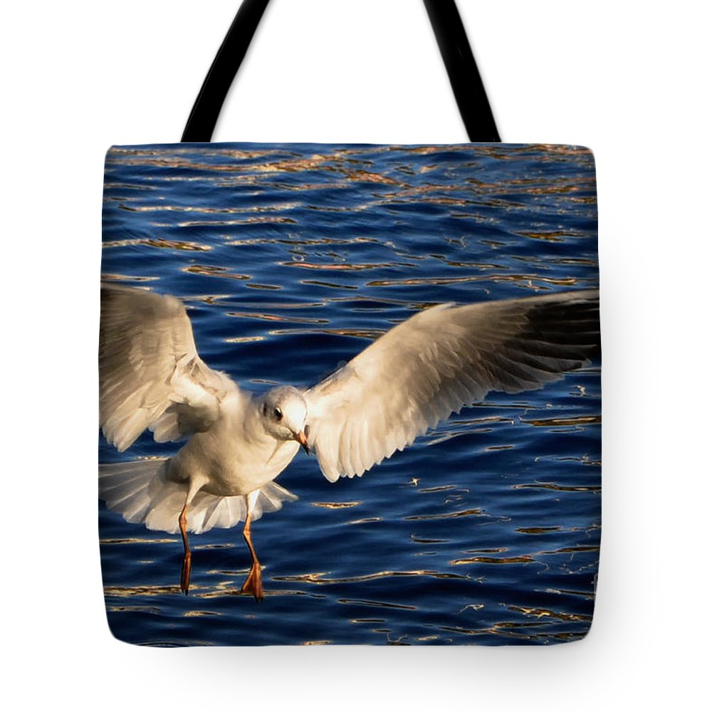 Bird Tote Bag featuring the photograph Bird Flying by Mats Silvan