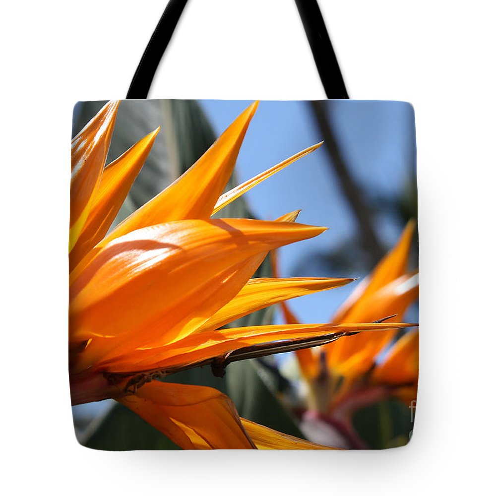 Wildflowers Tote Bag featuring the photograph Bird Of Paradise Flowers by Teresa Zieba