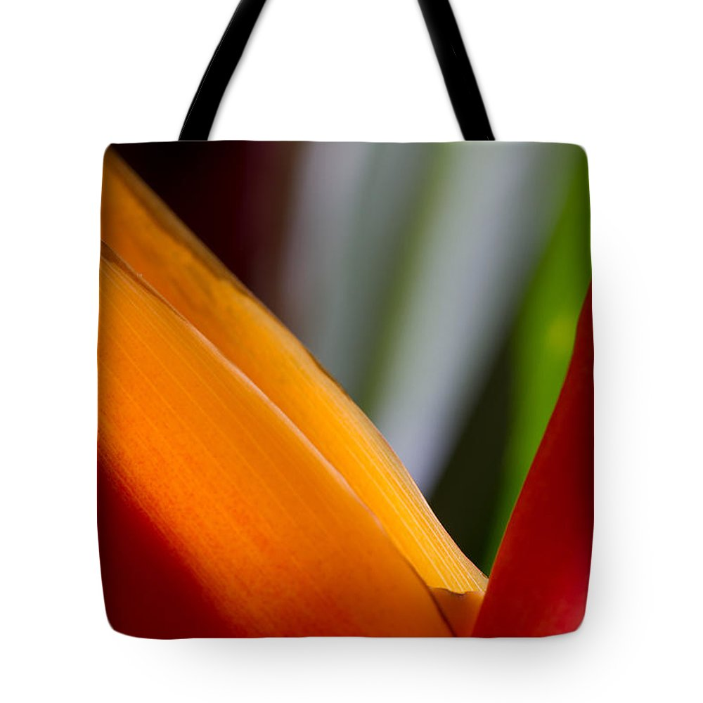 Bird Of Paradise Tote Bag featuring the photograph Bird Of Paradise by Roger Mullenhour