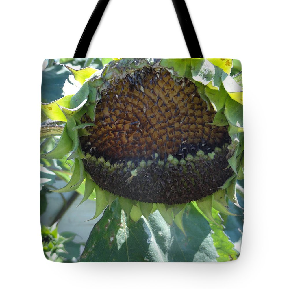 Sunflower Tote Bag featuring the photograph Bird Seed by Shannon Grissom