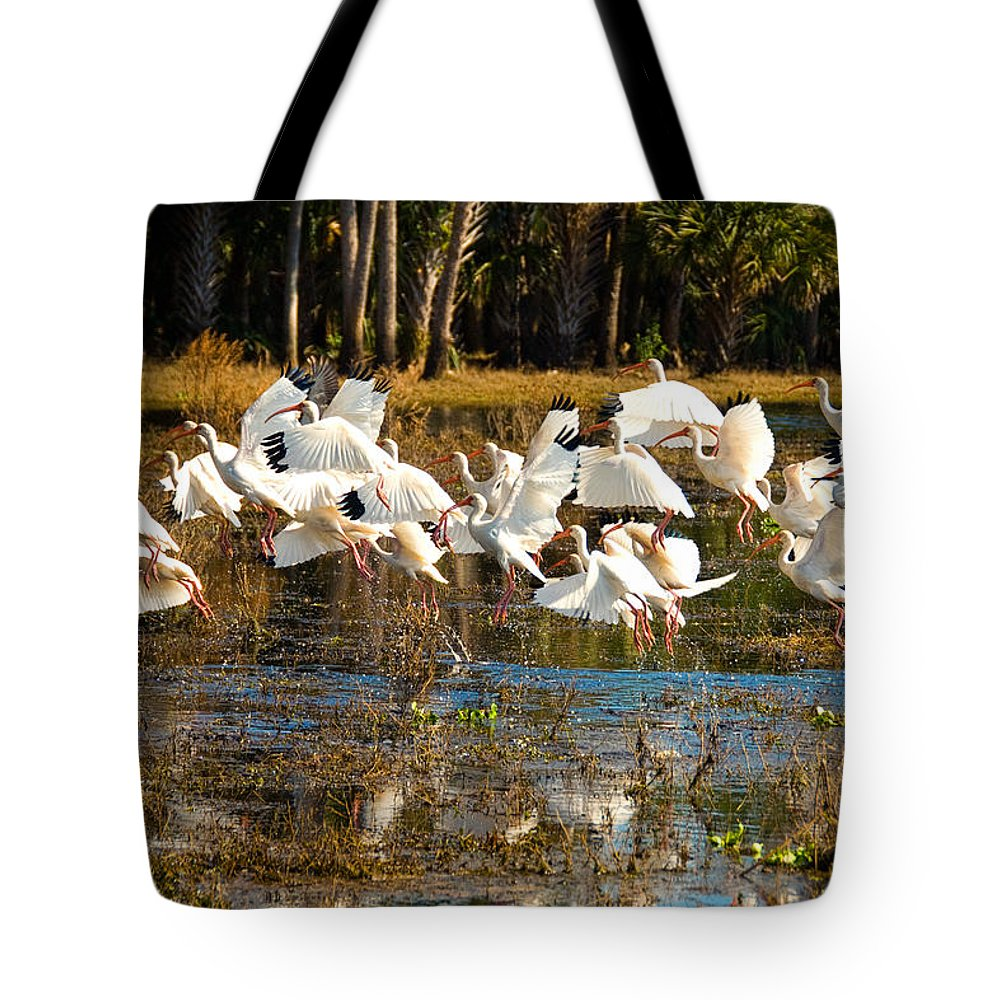 Birds Tote Bag featuring the photograph Birds Of A Feather by Cindy Tiefenbrunn