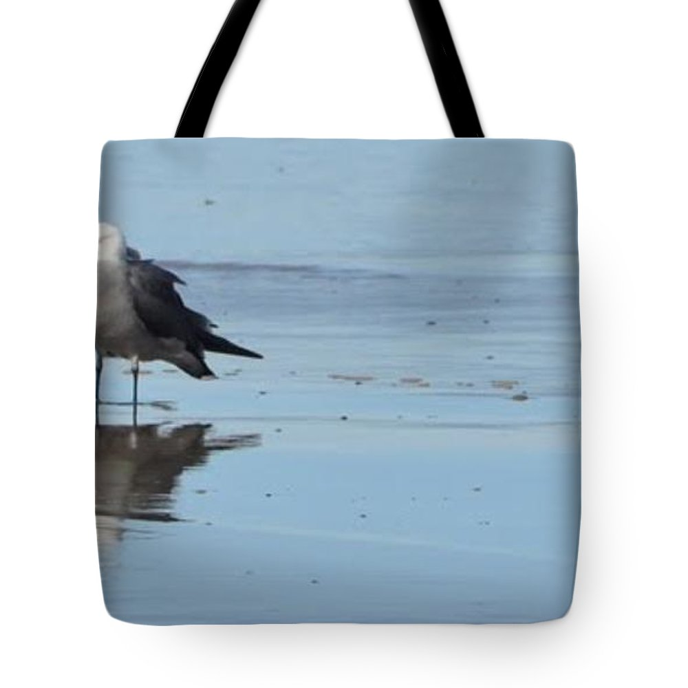 Bird Photos Tote Bag featuring the photograph Birds On The Beach by Saundra Lane Galloway