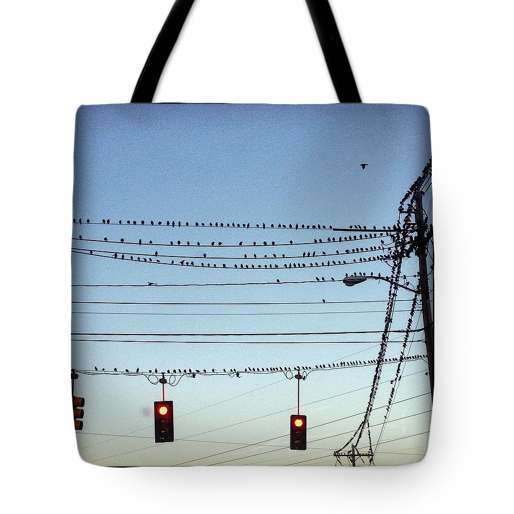 Tote Bag featuring the photograph Birds Stop by Mark Valentine