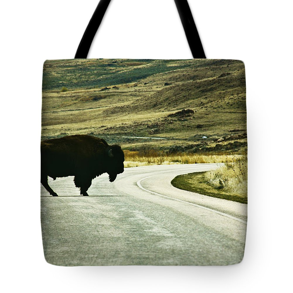 Utah Tote Bag featuring the photograph Bison Crossing Highway by Marilyn Hunt