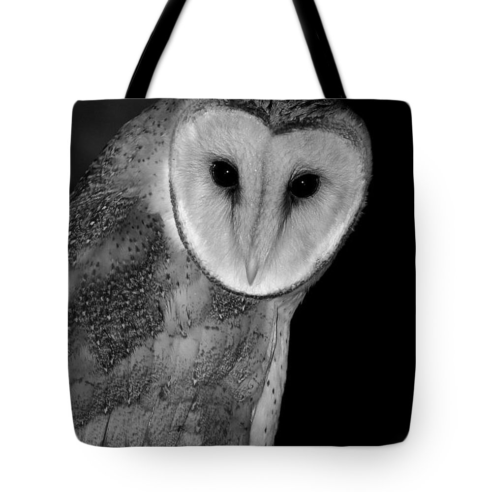 Owls tote bag featuring the photograph black and white barn owl by bruce j robinson