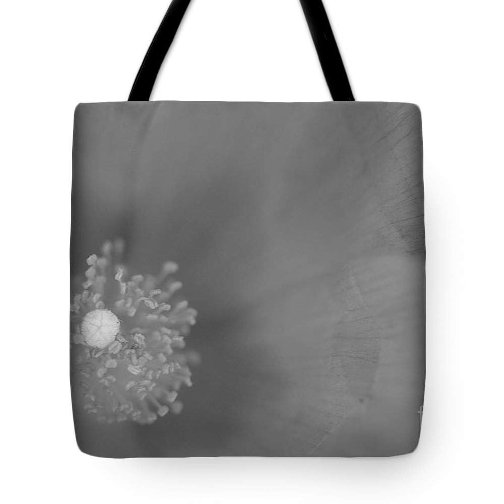 Pink Cosmo Photographs Tote Bag featuring the photograph Black And White Cosmo by Brooke Roby