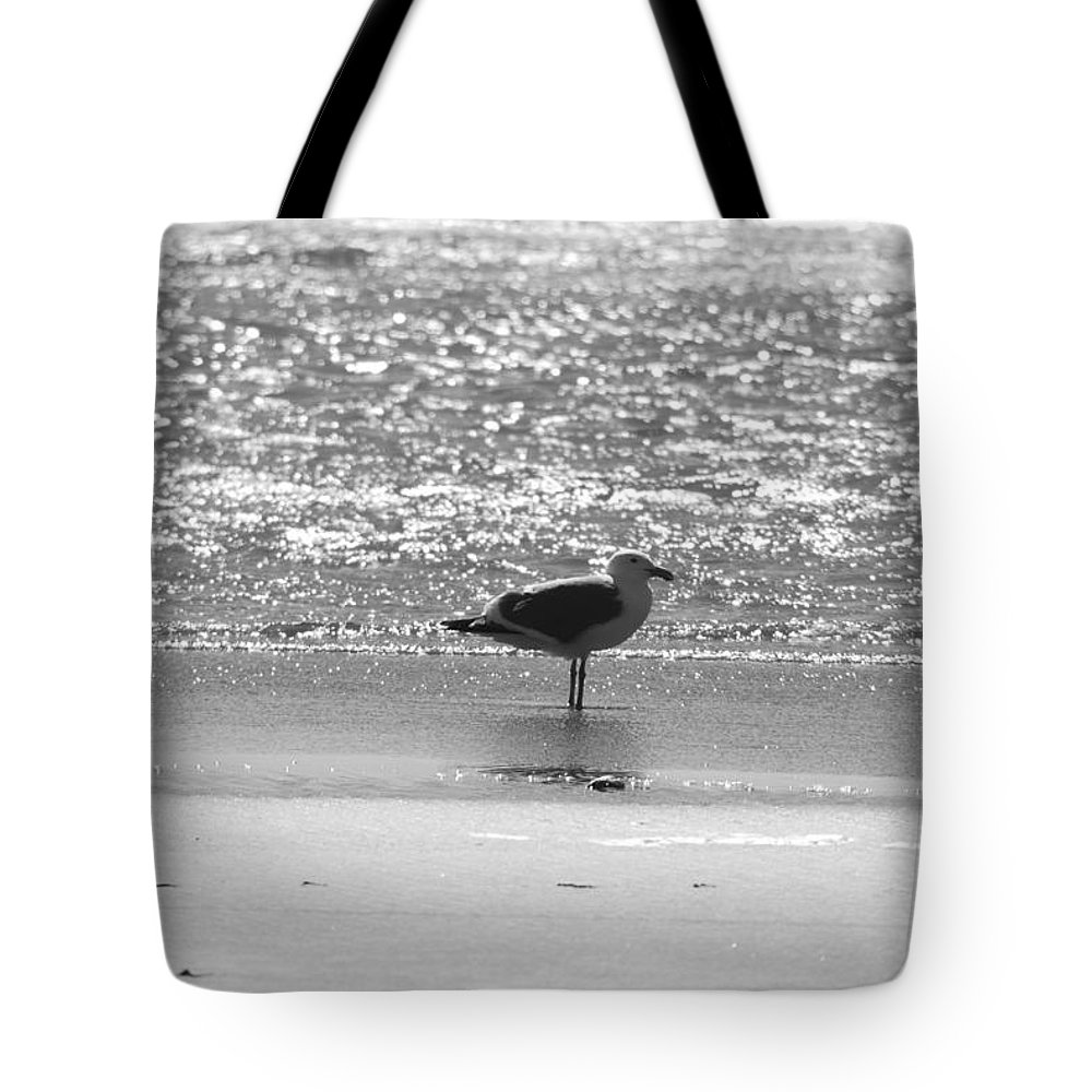 Gull Tote Bag featuring the photograph Black And White Gull by Michael Merry