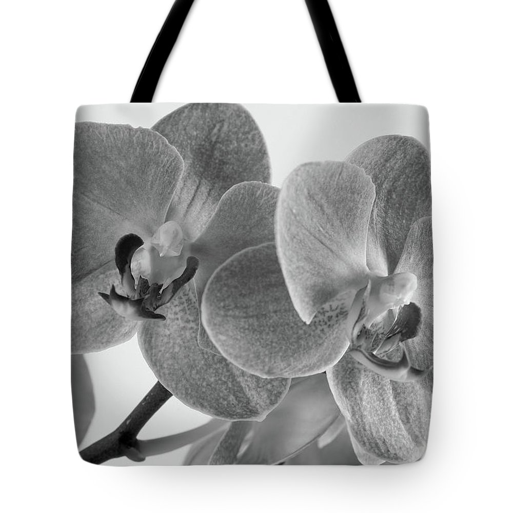 Bloom Tote Bag featuring the photograph Black And White Orchid by Dariusz Gudowicz