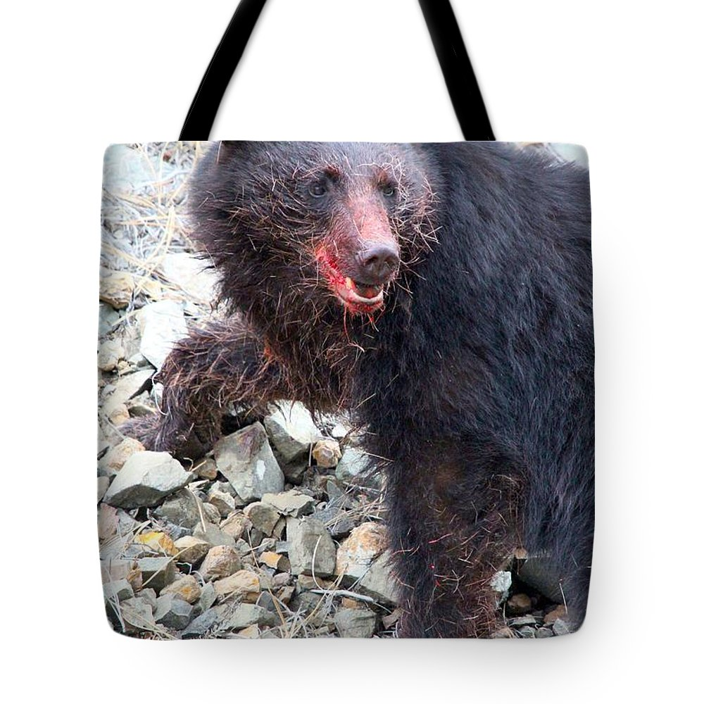 Black Bear Tote Bag featuring the photograph Black Bear Bloodied Lunch by Ian Mcadie