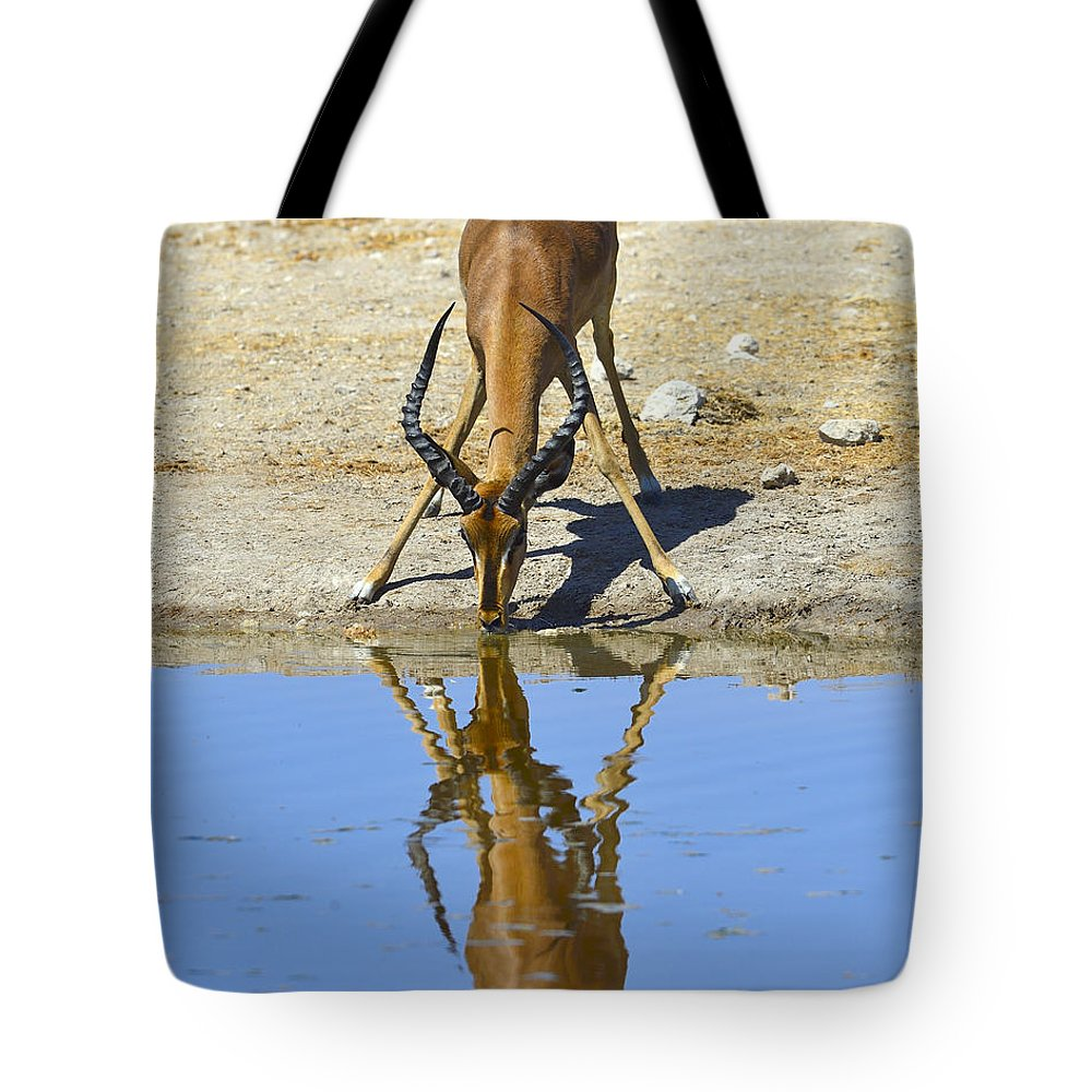 Impala Tote Bag featuring the photograph Black-faced Impala by Tony Beck