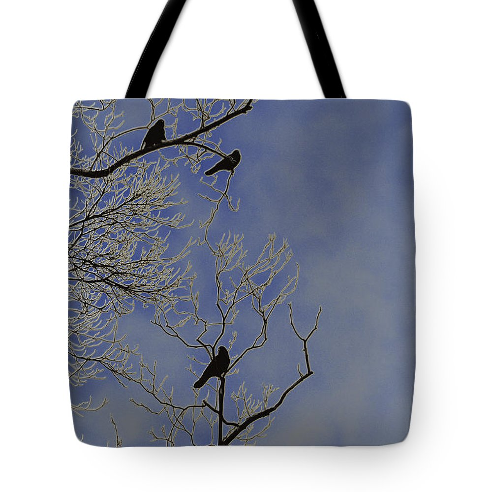 Blackbird Tote Bag featuring the photograph Blackbirds by Bill Cannon