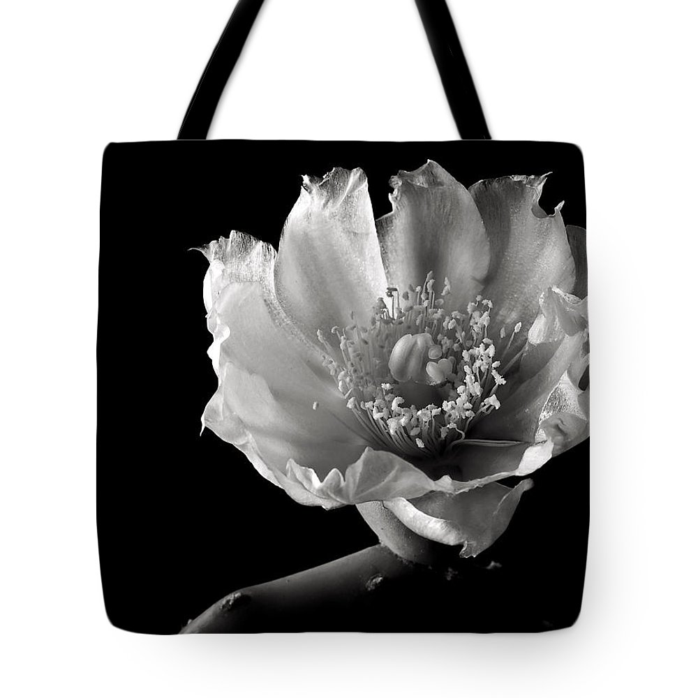 Flower Tote Bag featuring the photograph Blind Prickly Pear Cactus In Black And White by Endre Balogh