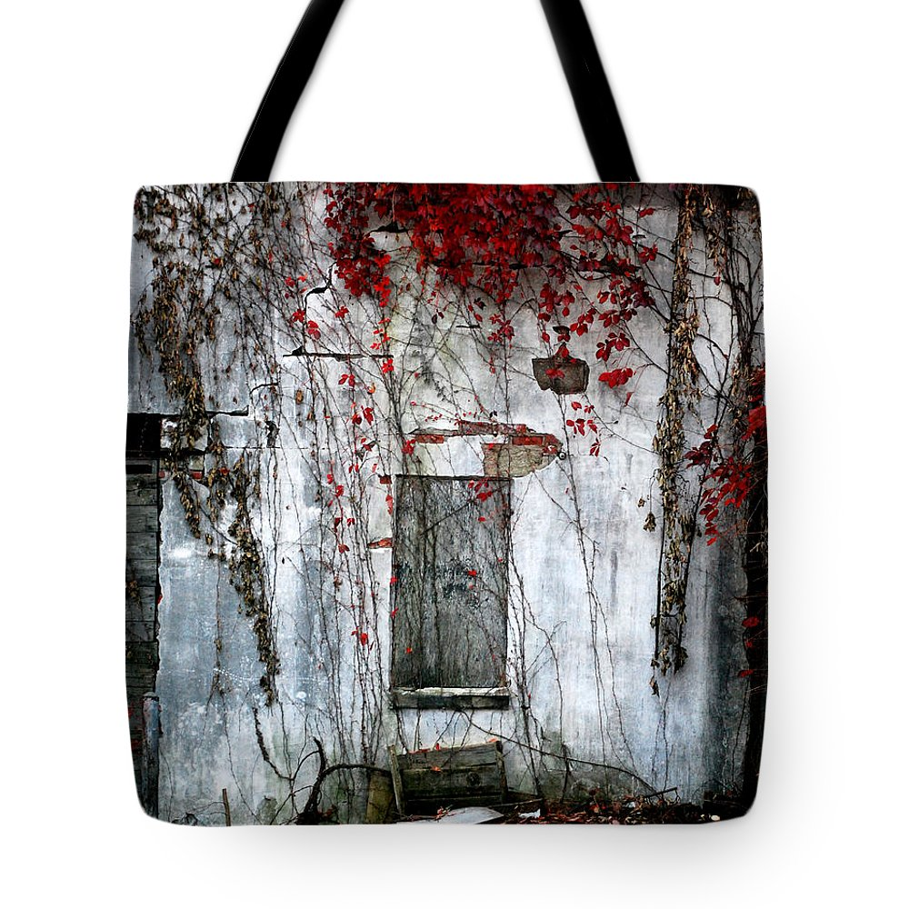 Landscape Tote Bag featuring the photograph Blood Ivy by Mark Orr