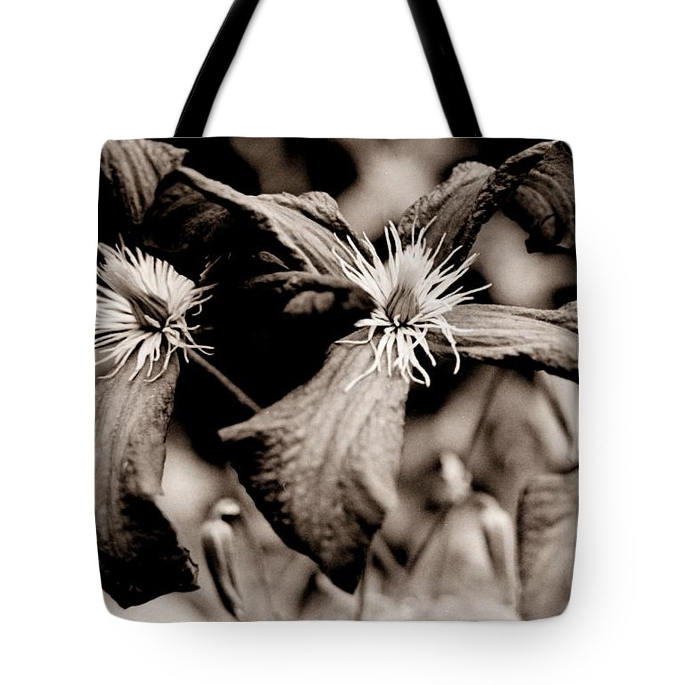 Bloom Tote Bag featuring the photograph Bloom by T Campbell