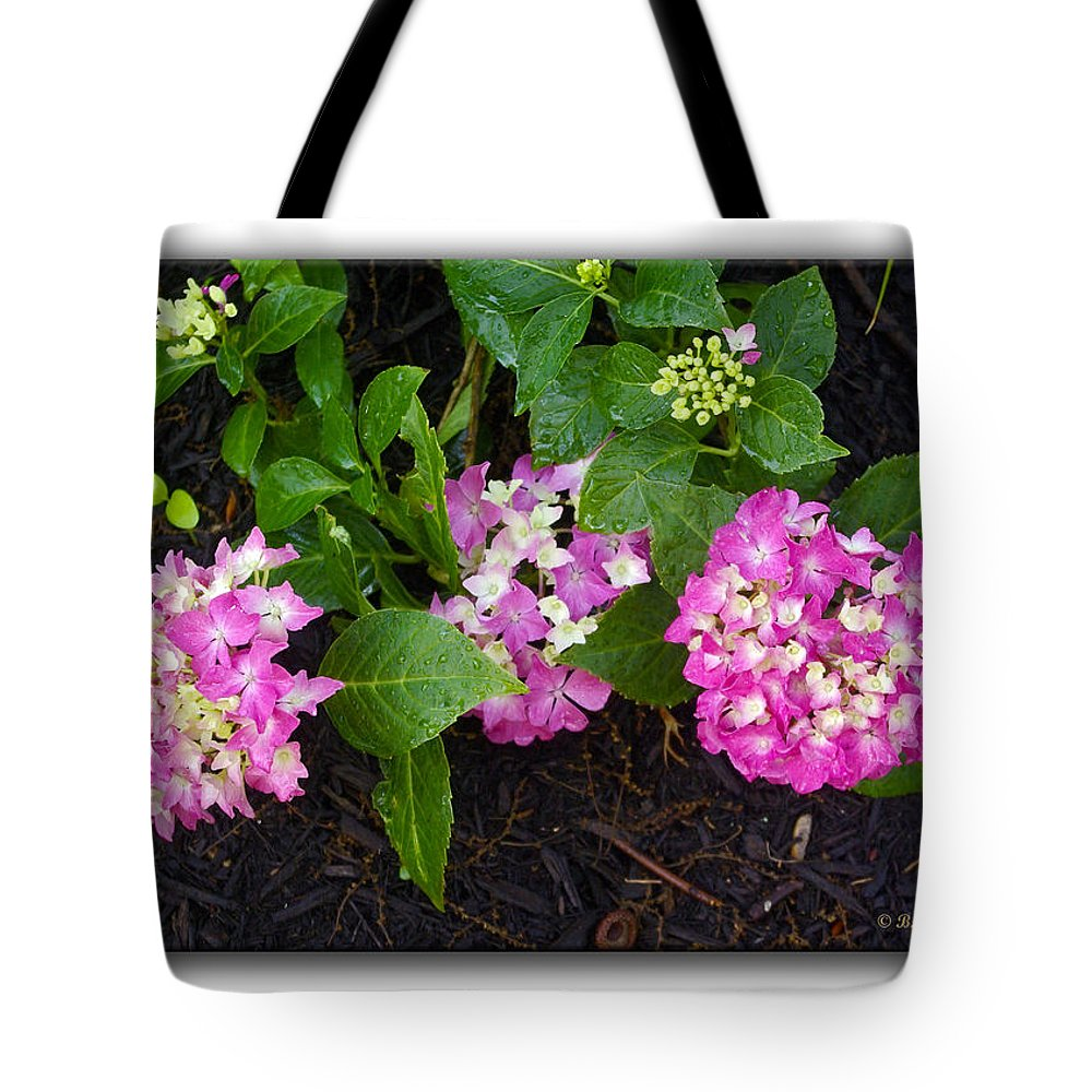 2d Tote Bag featuring the photograph Blossoms And Rain Drops by Brian Wallace
