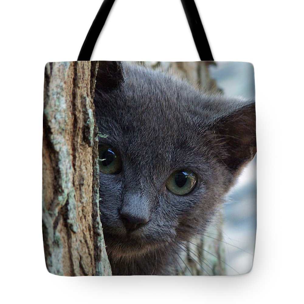 Cat Tote Bag featuring the photograph Russian Blue,cat by Sandra Reeves
