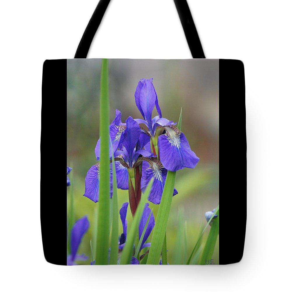 Sky Tote Bag featuring the photograph Blue Flag Iris - Dsc03987 by Shirley Heyn