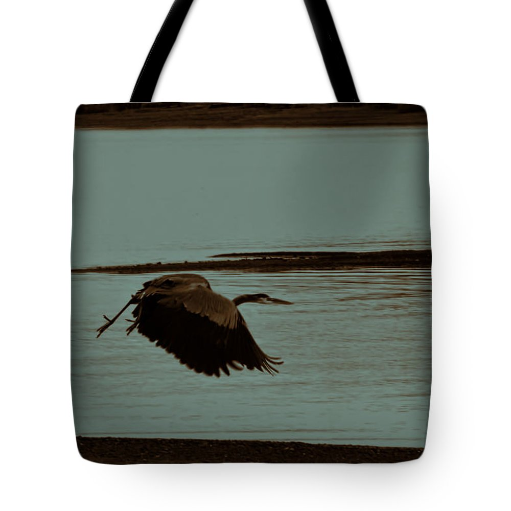 Blue Heron In Flight Tote Bag featuring the photograph Blue Heron In Flight by Douglas Barnard