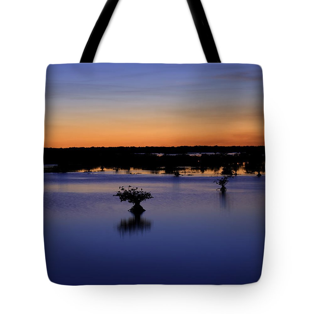 Nature Tote Bag featuring the photograph Blue Sunset Mangroves by Rich Franco