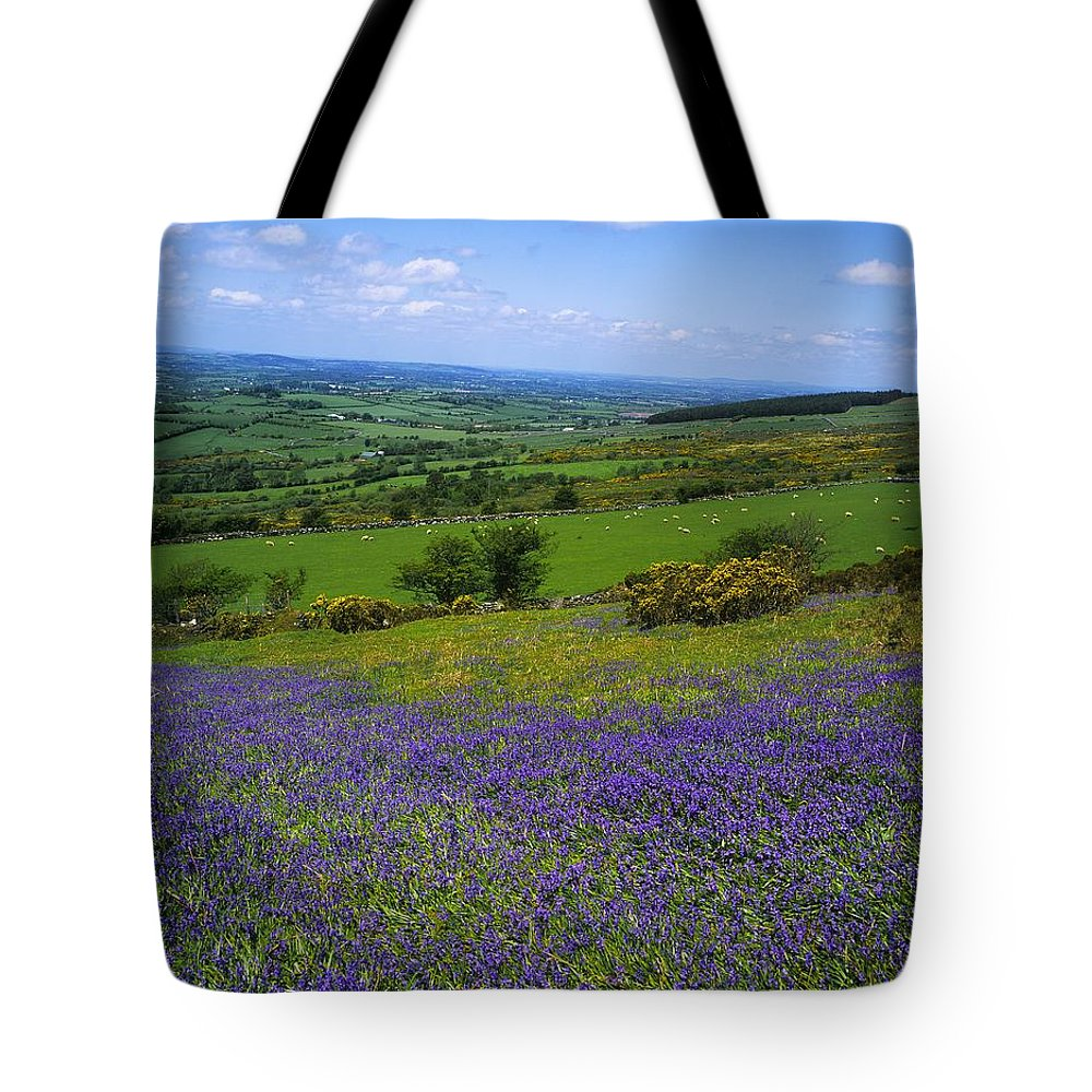 Beauty In Nature Tote Bag featuring the photograph Bluebell Flowers On A Landscape, County by The Irish Image Collection