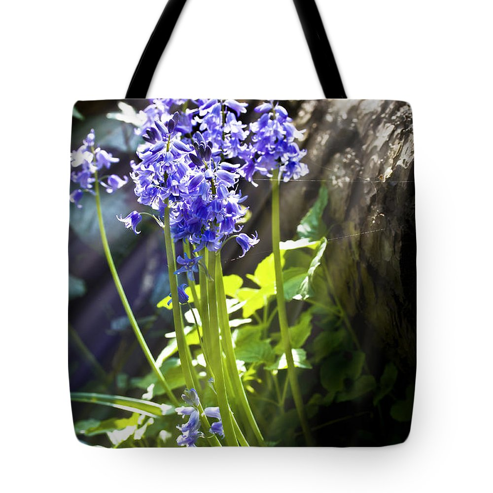 Background Tote Bag featuring the photograph Bluebells In The Woods by Simon Bratt Photography LRPS