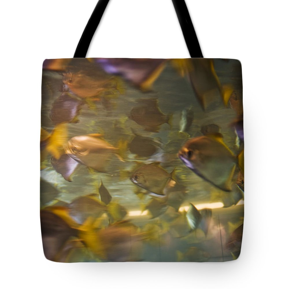 Fish Tote Bag featuring the photograph Blurred Image Of Fish Swimming In An by Todd Gipstein