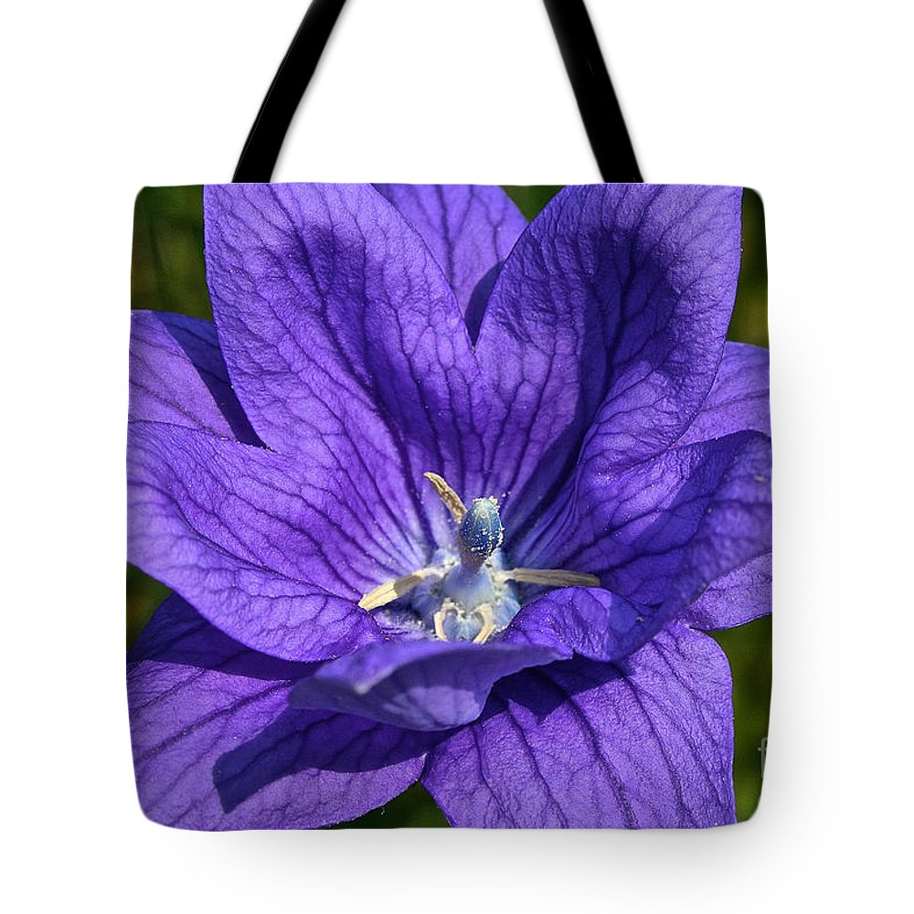 Flower Tote Bag featuring the photograph Bodacious Balloon Flower by Susan Herber