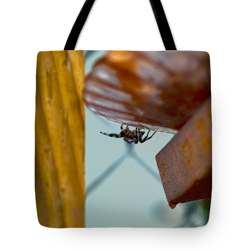 Spider Tote Bag featuring the photograph Boo by Stephanie Haertling