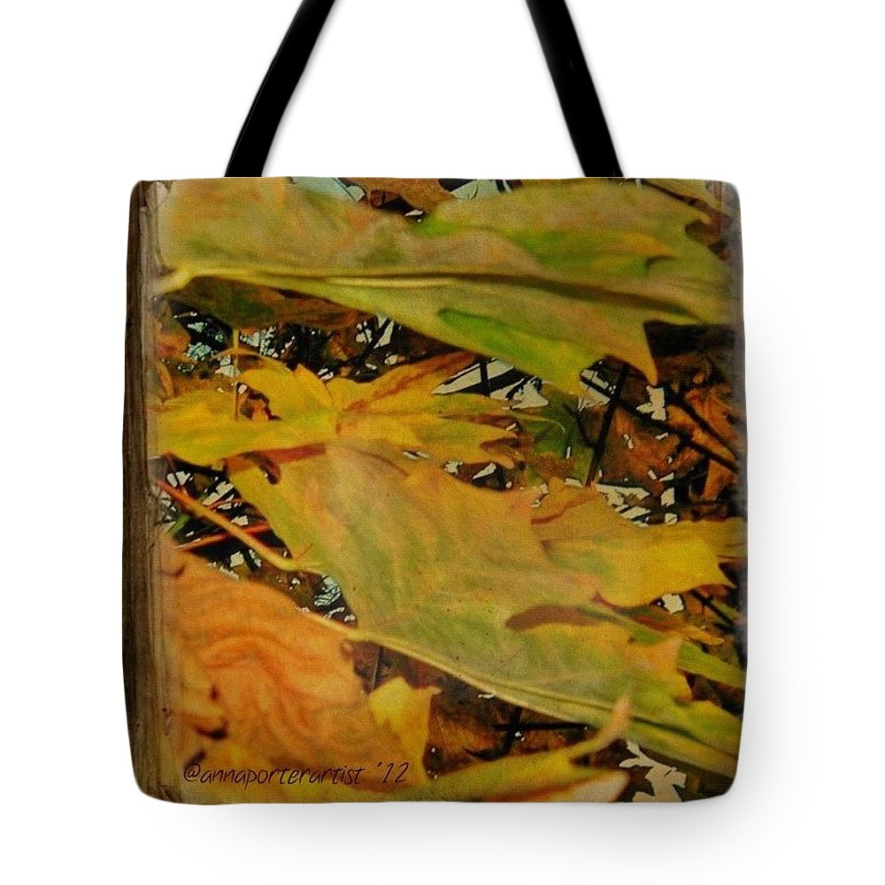 Fall Color Tote Bag featuring the photograph Book Of Leaves by Anna Porter