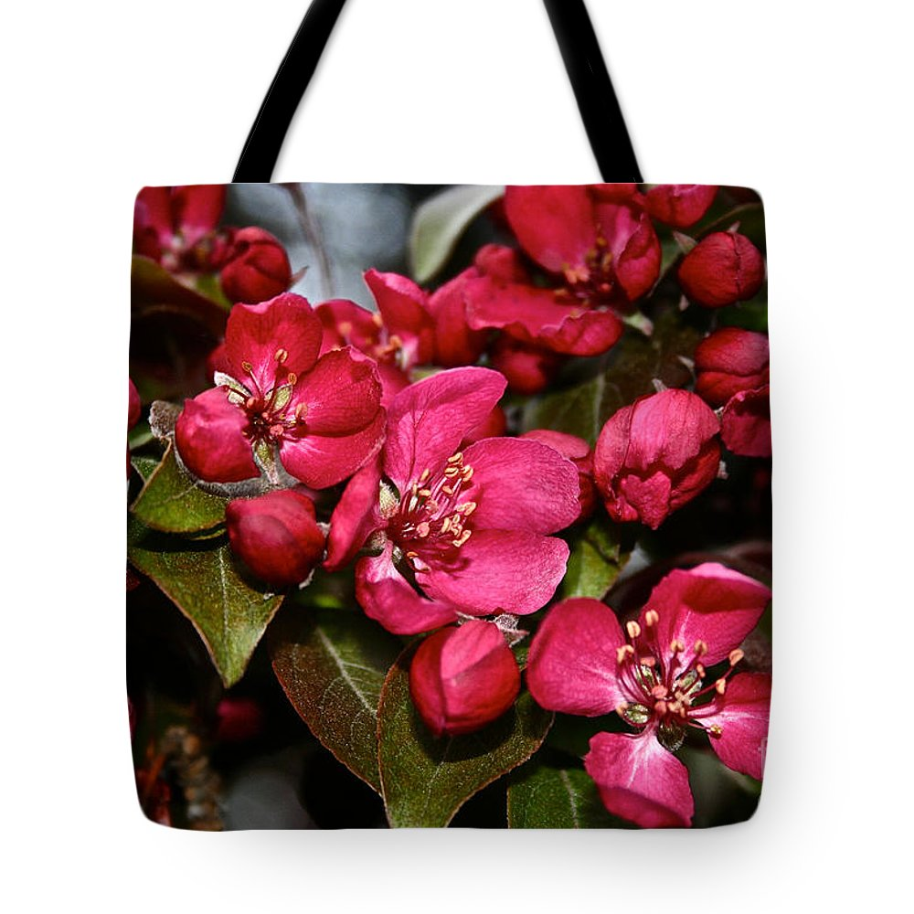 Plant Tote Bag featuring the photograph Bounty Forthcoming by Susan Herber