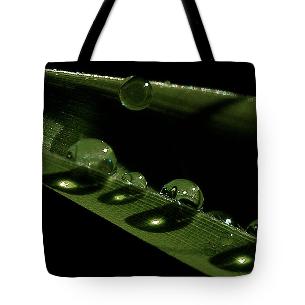 Drops Tote Bag featuring the photograph Bright Drops by David Resnikoff