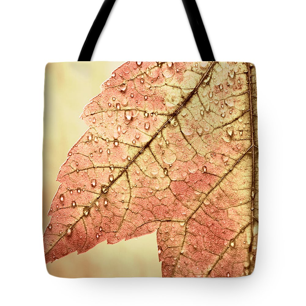 Red Tote Bag featuring the photograph Brown Autumn by Carol Leigh