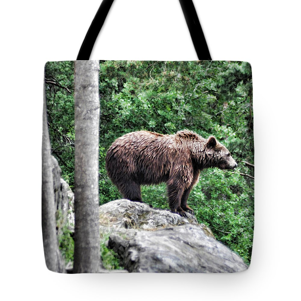 Bear Tote Bag featuring the painting Brown Bear 208 by Dean Wittle