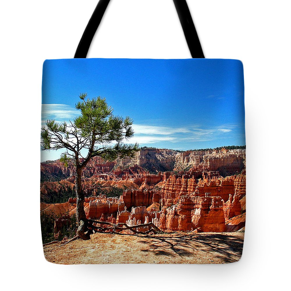 Bryce Canyon National Park Tote Bag featuring the photograph Bryce Canyon National Park by Elizabeth Rose