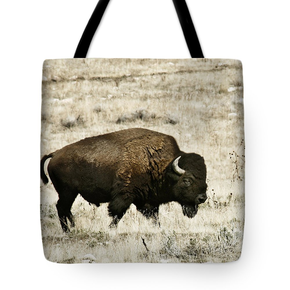 Utah Tote Bag featuring the photograph Buff Profile by Marilyn Hunt