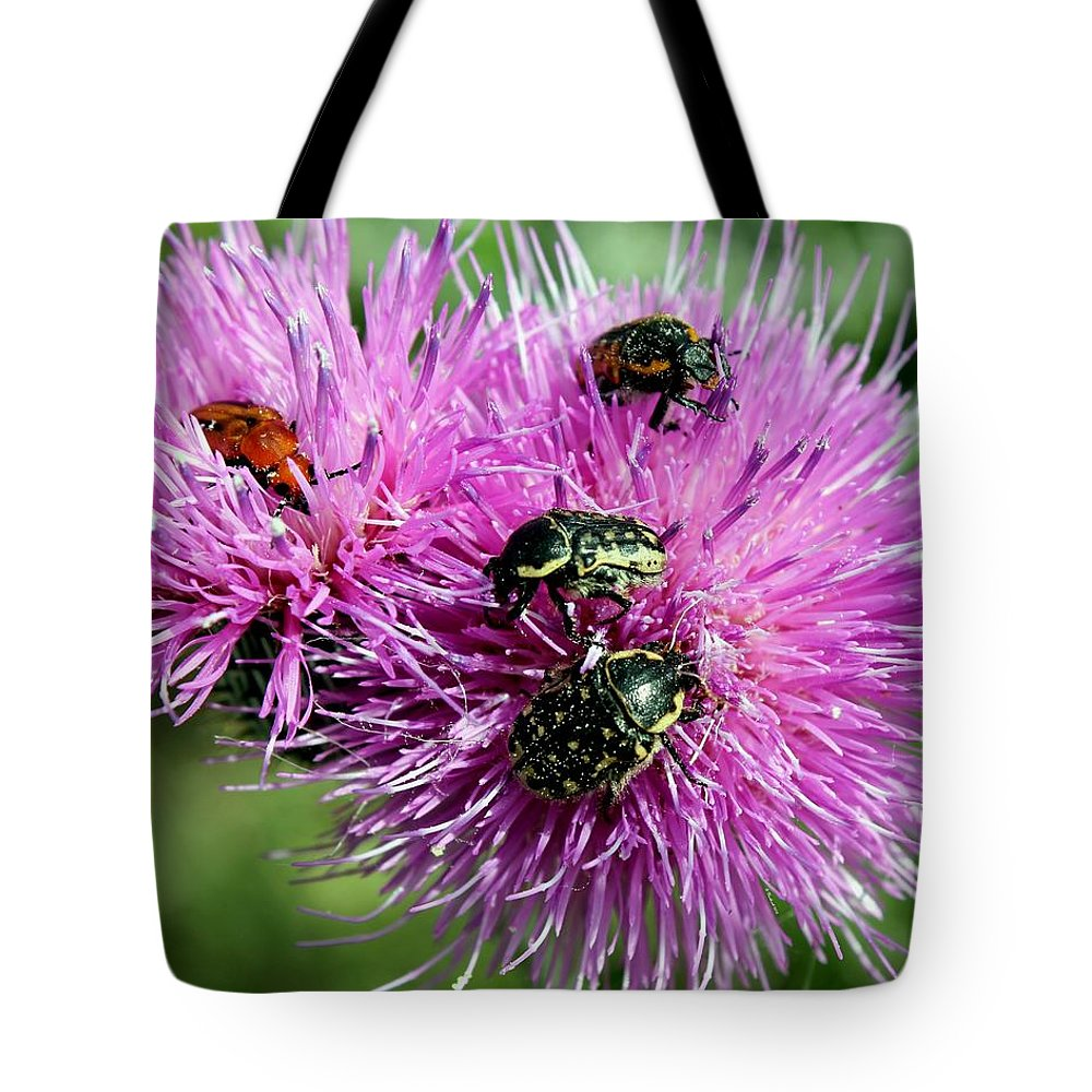 Bug Tote Bag featuring the photograph Bugfest by Betty Northcutt