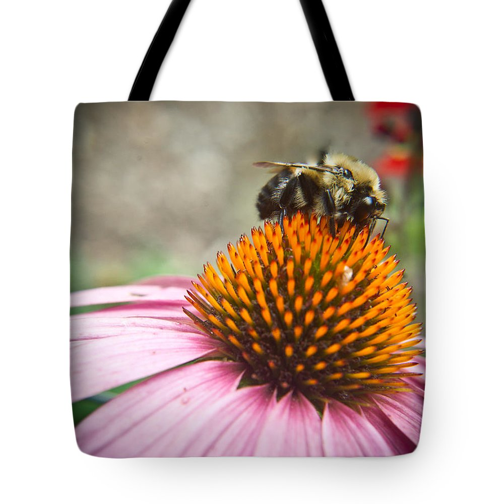 Coneflower Tote Bag featuring the photograph Bumble Bee Feeding On A Coneflower by Douglas Barnett